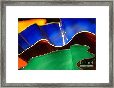 Colorful Shells Framed Print