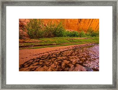 Colorful Streambed - Coyote Gulch - Utah Framed Print by Gary Whitton