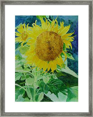 Colorful Sunflowers Watercolor Original Sunflower Art Framed Print