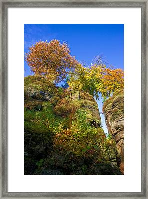 Colorful Trees In The Elbe Sandstone Mountains Framed Print