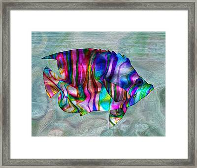 Colorful Tropical Fish Framed Print