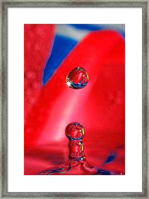 Framed Print featuring the photograph Colorful Water Drop by Peter Lakomy