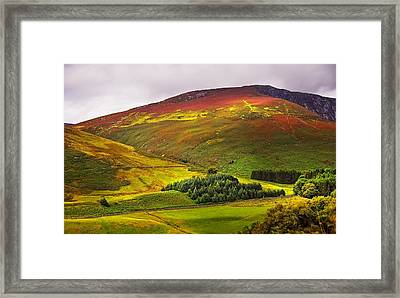 Colorful Wicklow Hills At Fall. Ireland Framed Print by Jenny Rainbow