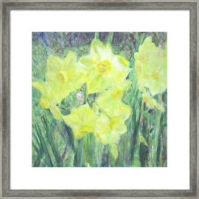 Colorful  Yellow Flowers Framed Print
