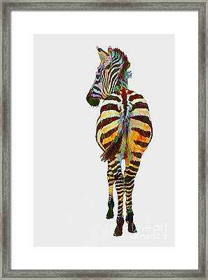Colorful Zebra Framed Print