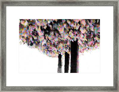 Colorfull Autumn Trees Framed Print by Tommytechno Sweden