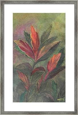 Colorfull Framed Print by Usha Rai