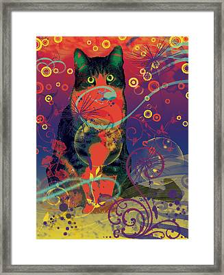 Colorfur Cat Framed Print