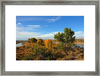 Colors Along The Colorado Framed Print by Bob Hislop