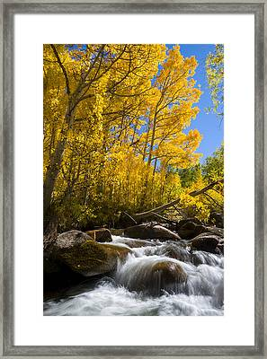 Colors And The Cascades Of South Fork Bishop Creek Framed Print