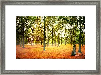 Framed Print featuring the photograph Colors Cool by Boon Mee