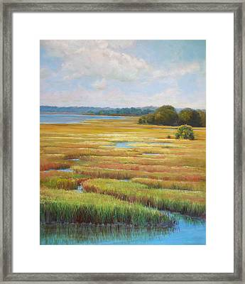 Colors In The Marsh Framed Print