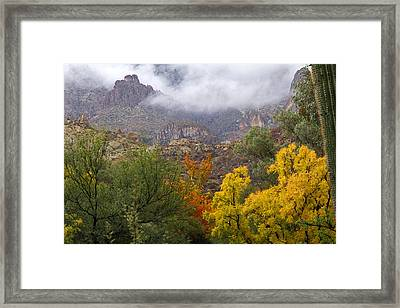 Colors In The Mist Framed Print