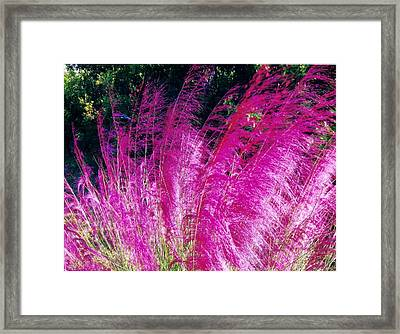 Colors Framed Print by James McAdams
