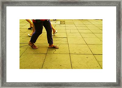 Colors Framed Print by Lucy D