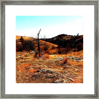 Colors Framed Print by Mickey Harkins