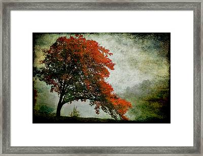 Colors Of A Dream Framed Print by Heather A McGhee