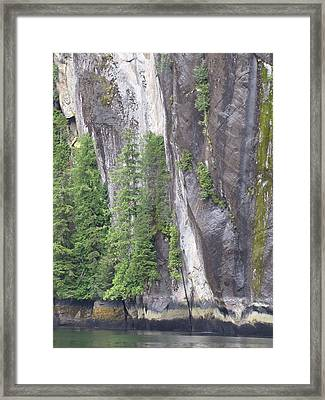 Colors Of Alaska - More From Misty Fjords Framed Print
