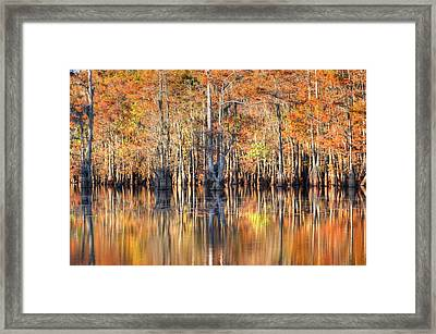Colors Of Autumn Framed Print by Ester  Rogers