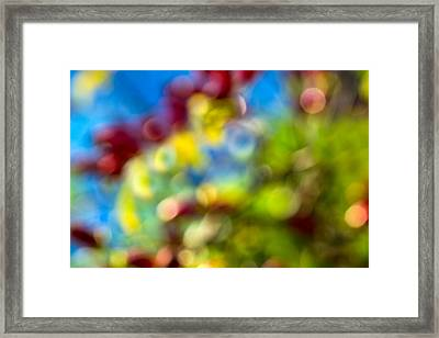 Colors Of Autumn - Featured 3 Framed Print