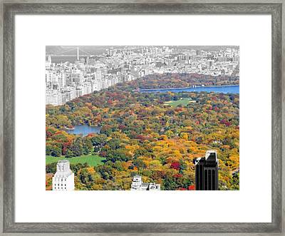 Colors Of Central Park Framed Print by Dan Sproul