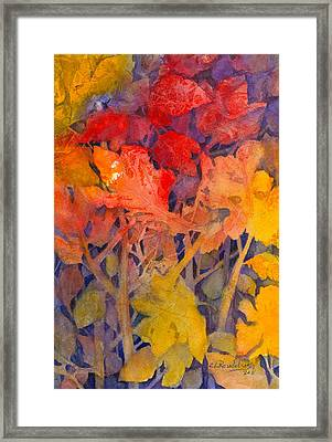 Colors Of Fall Framed Print by Cynthia Roudebush