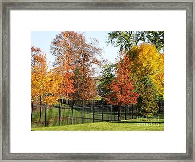 Framed Print featuring the photograph Colors Of Fall by Judy Palkimas
