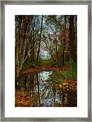 Colors Of Fall Framed Print by Kristi Swift