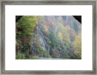 Colors Of Fall Framed Print by Melony McAuley