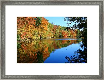 Colors Of Fall Framed Print by Susan  McMenamin