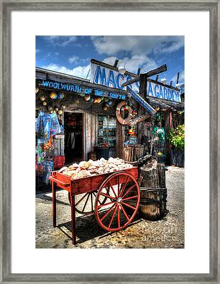 Colors Of Key West 3 Framed Print by Mel Steinhauer