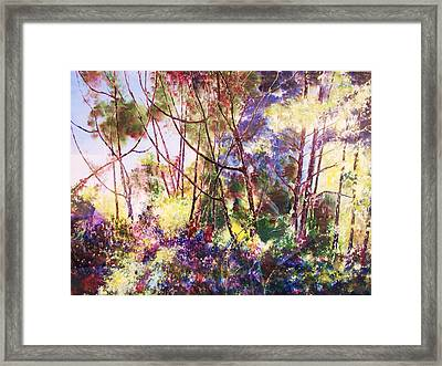 Colors Of Leaves Framed Print
