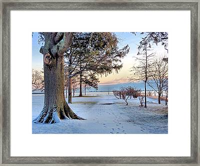 Colors Of Morning Framed Print by Janice Drew