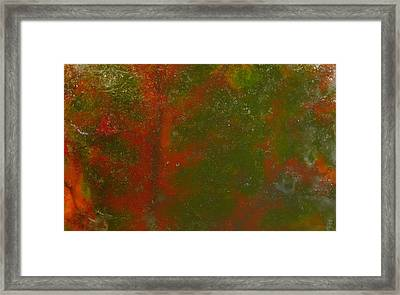 Colors Of Nature 12 Framed Print