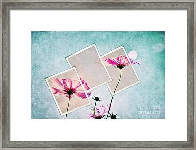 Colors Of Nature Framed Print by Angela Doelling AD DESIGN Photo and PhotoArt