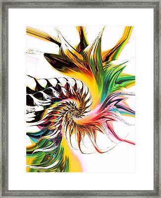 Colors Of Passion Framed Print