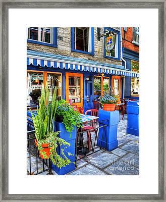 Colors Of Quebec 7 Framed Print by Mel Steinhauer