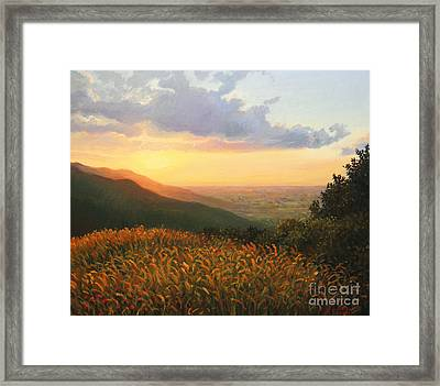 Colors Of The Light Framed Print by Kiril Stanchev
