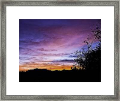 Colors Of The Night Framed Print by Nancy Marie Ricketts