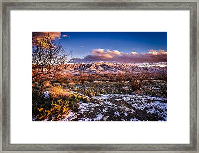 Colors Of Winter Framed Print by Mark Myhaver