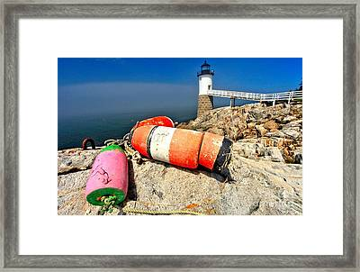 Colors On The Rocks Framed Print by Adam Jewell