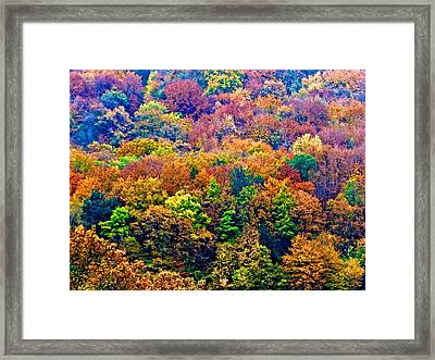 Colors To Winter 2 Framed Print