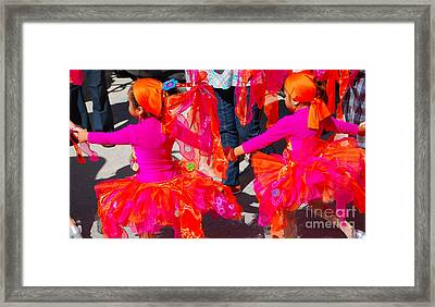 Colors....coordinated Framed Print by Jim Rossol