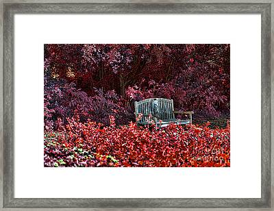 Colorspace Framed Print by Douglas Barnard