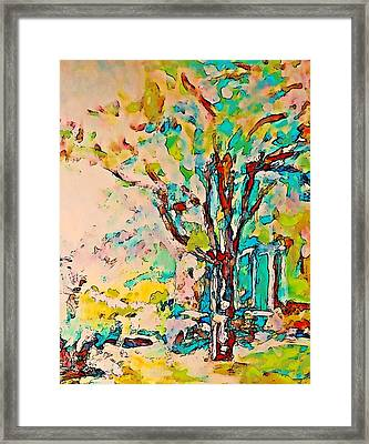 Colourful Cherry Tree Framed Print