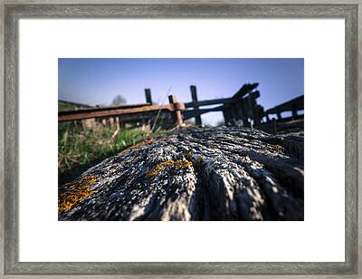Framed Print featuring the photograph Colour In Decay  by Stewart Scott
