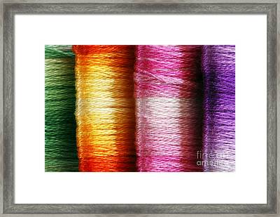 Colour Me Happy Framed Print by Wendy Wilton