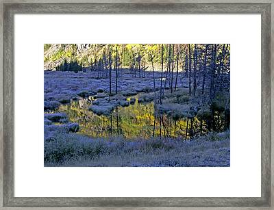 Framed Print featuring the photograph Colour Palette by Jeremy Rhoades
