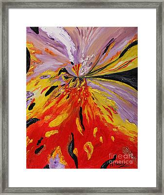 Colourburst Framed Print by Loredana Messina