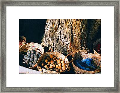 Framed Print featuring the photograph Coloured Baskets by Cassandra Buckley